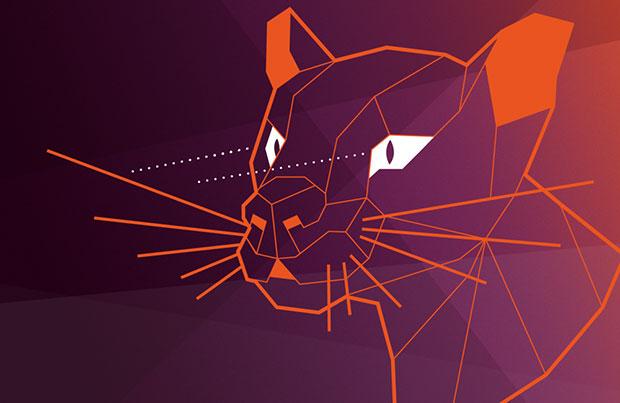 Ubuntu 20.04 LTS (Focal Fossa)